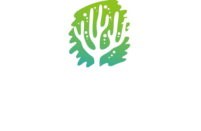 コーラルグリーン